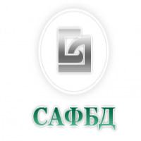 Дистанционное обучение в Сибирской академии финансов и банковского дела