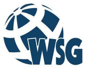 Помощь с дистанционным обучением в WSG (Высшая школа экономики г. Быгдощ)